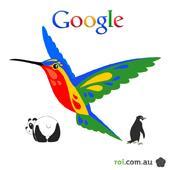 توجه مرغ مگس خوار با گوگل پلاس