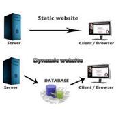تفاوت های سایت استاتیک با داینامیک