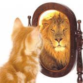 8 راهکار عالی برای تقویت اعتماد به نفس و موفقیت