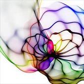 تاثیر رنگ و انتقال مفهوم بهتر موضوع در وب سایت