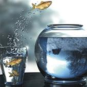 4 عادت موفق آمیز جدید در هر سال ایجاد کنید