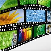 گرایش استفاده از Video Background در طراحی وب