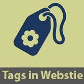 4 Meta Tags مهم و موثر در SEO