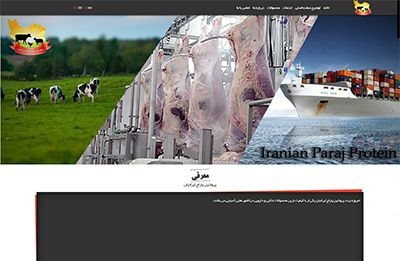 طراحی سایت شرکت پروتئین پاراج